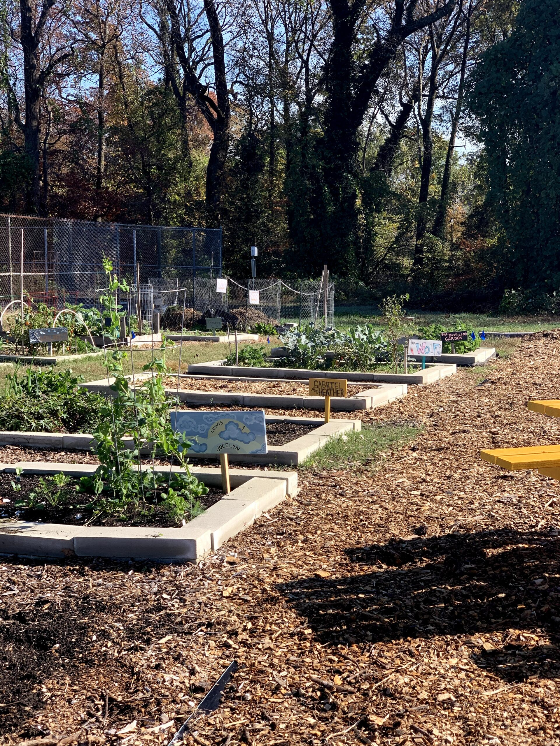 Brookland Park Garden To Table Project – 2021